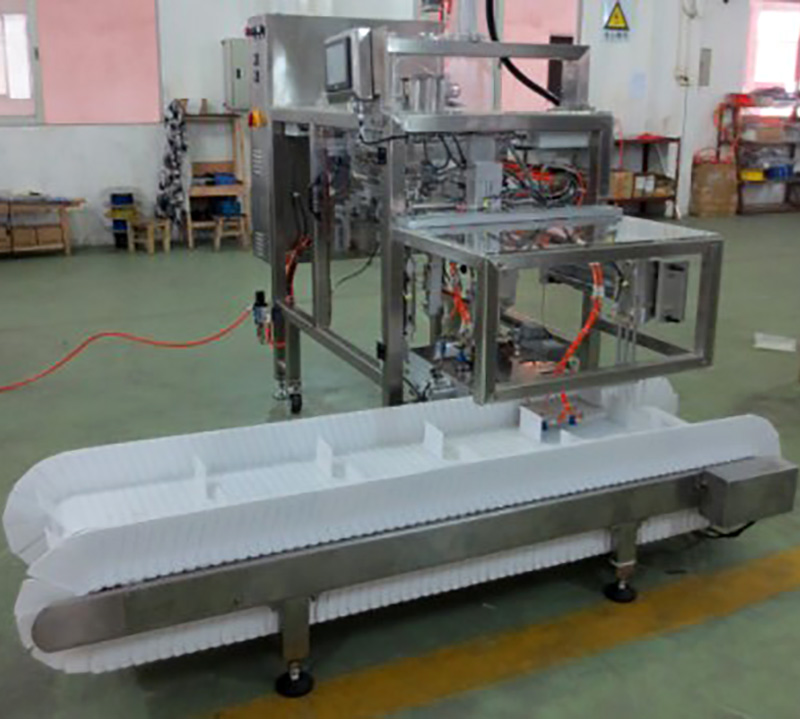 Latest chips packaging machine different sized Supply for pre-openned zipper pouch-7